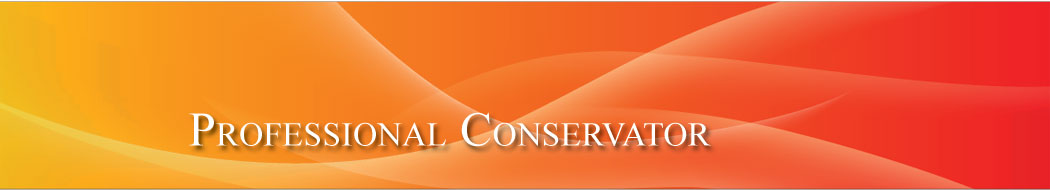 header_professionalconservator